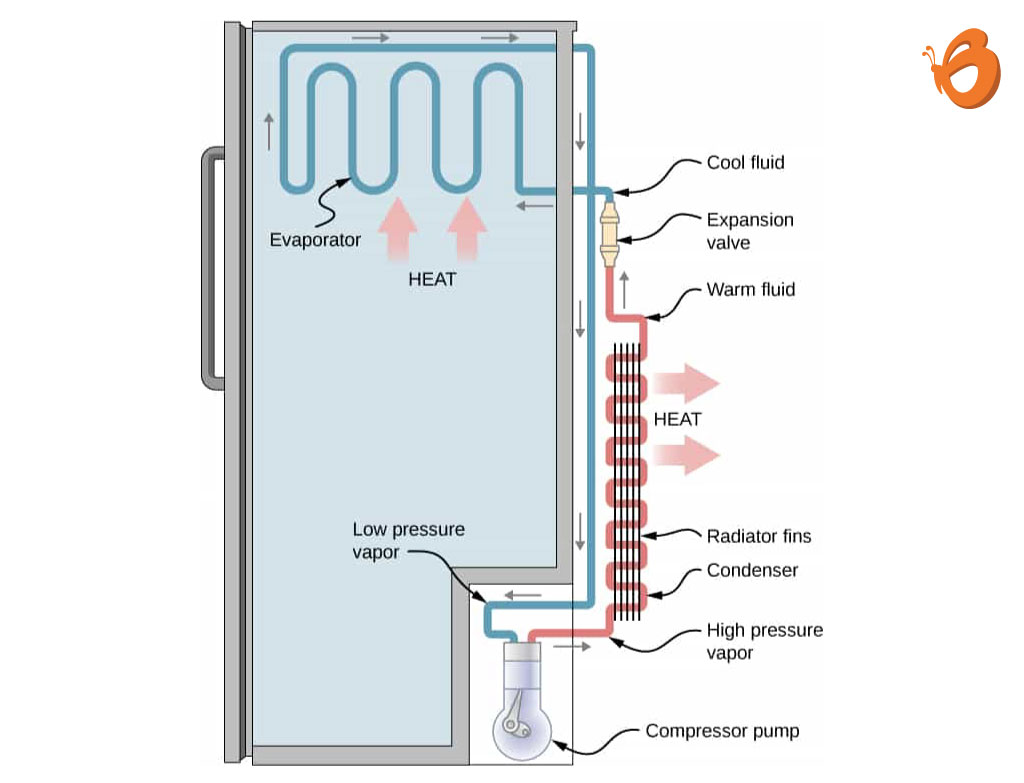 How-does-a-Refrigerator-work1 How Does A Refrigerator Work?