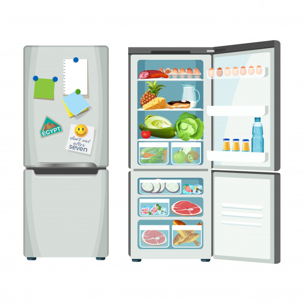 fridge-closed-full-products-1 How Does A Refrigerator Work?